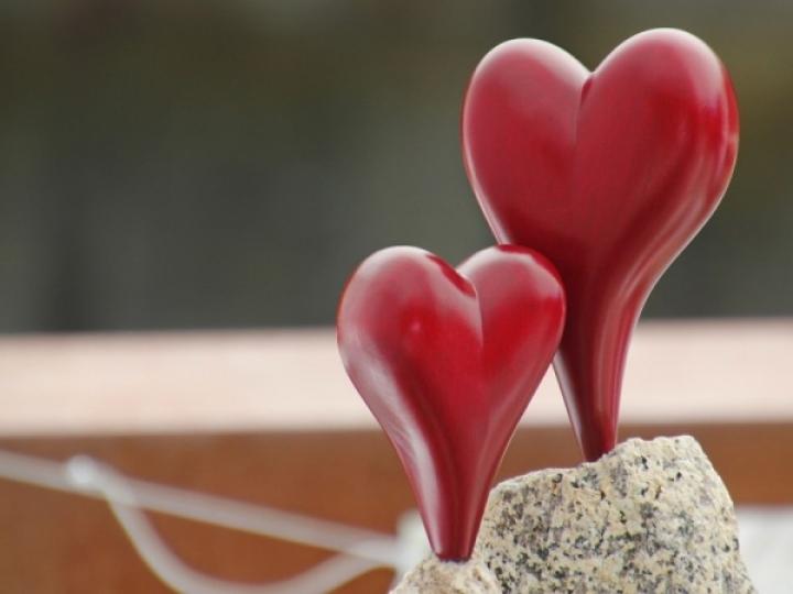 Festival Terre di San Valentino a Terni Foto